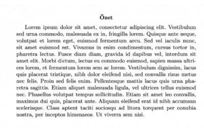 Abstract Çevirisi