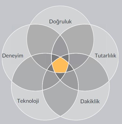 Çeviri Şirketleri